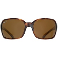 havanna / brown classic
