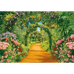 Fototapete Flower Alley, glatt 3 m x 2,23 m