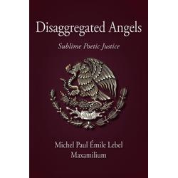 Disaggregated Angels als Taschenbuch von Maxamilium
