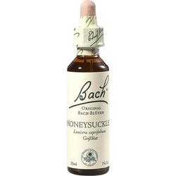 Bach-Blüte Honeysuckle