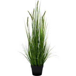 Kunstpflanze »Penisetum«, Kunstpflanzen, 34965756-0 grün H: 90 cm grün