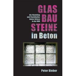 Glasbausteine in Beton als Buch von Peter Bieber