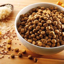alsa-nature Hundefutter vegetarisch, 3 kg, Hundefutter