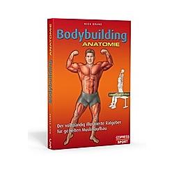 Bodybuilding Anatomie
