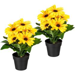 Künstliche Zimmerpflanze Elaine Gerbera, my home, Höhe 27 cm, 2er Set gelb