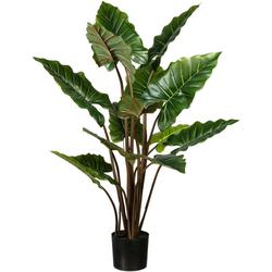 Künstliche Zimmerpflanze Taropflanze Taropflanze, Creativ green, Höhe 140 cm