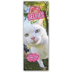 Cat Selfies - Katzen-Selfies 2021