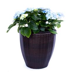 Blumenkübel Polyrattan D30xH30cm coffee braun