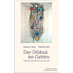 Der Dibbuk im Gehirn. Moshe Idel  Shahar Arzy  - Buch