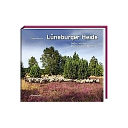 Lüneburger Heide. Jürgen Borris  - Buch