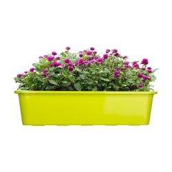 BigDean Blumenkasten für den Balkon − 3x Balkonkasten 60 cm Lime (3 Stück) 60 cm
