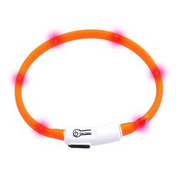 KARLIE Visio Light LED-Leuchthalsband für Hunde 35 cm orange