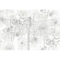 Architects Paper Fototapete Atelier 47 Dragon Fly 2, glatt, floral, (4 St) grau