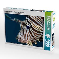 Rotfeuerfische im Profil sind sehr fotogen! Lege-Größe 64 x 48 cm Foto-Puzzle Bild von Ute Niemann Puzzle