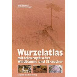 Wurzelatlas mitteleuropäischer Waldbäume und Sträucher als Buch von Lore Kutschera/ Erwin Lichtenegger