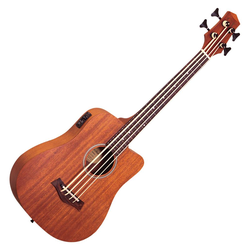 Gold Tone Micro Bass 23