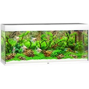 JUWEL AQUARIEN Aquarium Rio 240 LED, 240 Liter, BxTxH: 121x41x55 cm , in versch. Farben weiß