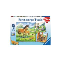 Ravensburger Puzzle 3er Set Puzzle, je 49 Teile, 21x21 cm, Kuschelzeit, Puzzleteile