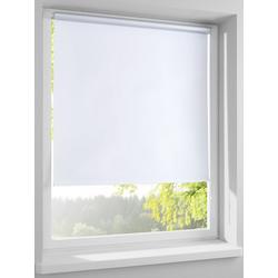 Rollo als Licht- und Sichtschutz weiß ca. 210/80 cm
