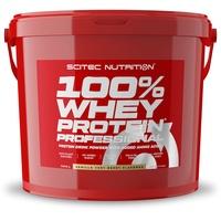 Scitec Nutrition 100% Whey Protein Professional Vanille Pulver 5000 g