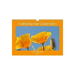 Kalifornischer Goldmohn (Wandkalender 2021 DIN A4 quer)