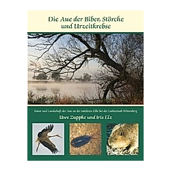 Die Aue der Biber  Störche und Urzeitkrebse. Uwe Zuppke  Iris Elz  - Buch