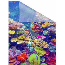 Fensterfolie Aquarium, LICHTBLICK ORIGINAL, blickdicht, strukturiert, selbstklebend, Sichtschutz 50 cm x 100 cm
