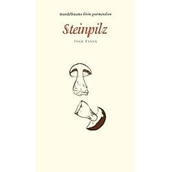 Steinpilz. Inge Fasan  - Buch
