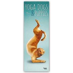 Yoga Dogs & Puppies - Yoga-Hunde und Yoga-Welpen 2021