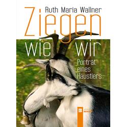 Ziegen wie wir als Buch von Ruth Maria Wallner