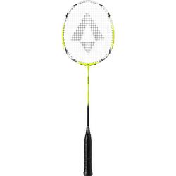 TECNOPRO Badmintonschläger Tri-Tec 300