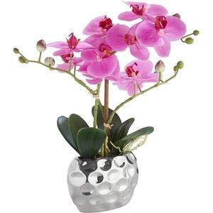 Kunstpflanze Orchidee Orchidee, Leonique, Höhe 38 cm lila 13 cm x 38 cm x 6,5 cm
