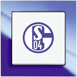 FC SCHALKE 04 FANSCHALTER KOMPLETT