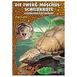 Die Zwerg-Moschus-Schildkröte. Jens Rauh  - Buch