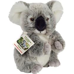 Koalabär 21 cm grau
