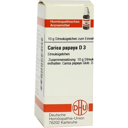 CARICA PAPAYA D 3