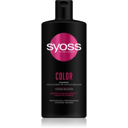 Syoss Color Tsubaki Blossom Shampoo für gefärbtes Haar 440 ml