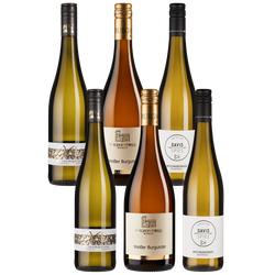 6er-Paket DLG-Jungwinzer 2021 - Weinpakete