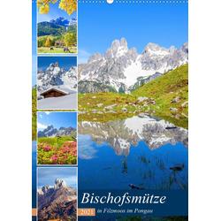 Bischofsmütze (Wandkalender 2021 DIN A2 hoch)