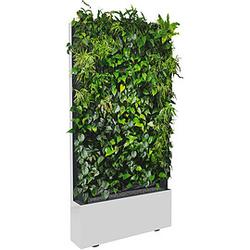 C+P Mobile Pflanzenwand für einseitige Bepflanzung mit Trays, b100xt40xh198cm