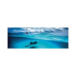 HEYE Puzzle Panorama-Puzzle 1000 Teile - Stingray, Puzzleteile