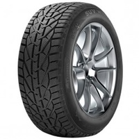 TAURUS Winter 205/55 R16 91T