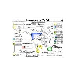 Hormone Tafel - Buch