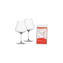SPIEGELAU Rotweinglas Definition Burgunderglas 2er Set mit Poliertuch, Glas