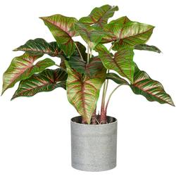 Künstliche Zimmerpflanze Taropflanze Taropflanze, Creativ green, Höhe 40 cm, im Melamintopf