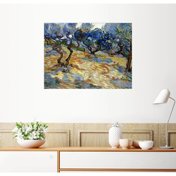 Posterlounge Wandbild, Olivenbäume 80 cm x 60 cm