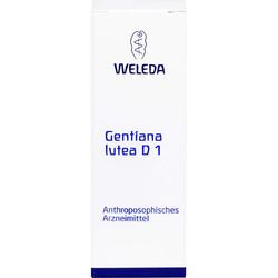 GENTIANA LUTEA D 1 Dilution 50 ml