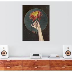 Posterlounge Wandbild, Mondblume 50 cm x 70 cm