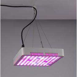 80 W Pflanzenlicht LED Leuchte eckig