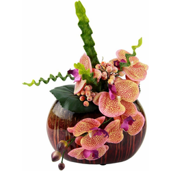 Kunstpflanze Orchidee Orchidee, Höhe 25 cm